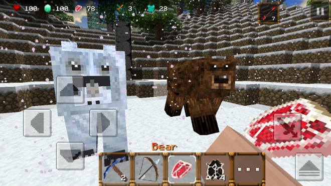 screenshot Winter Craft