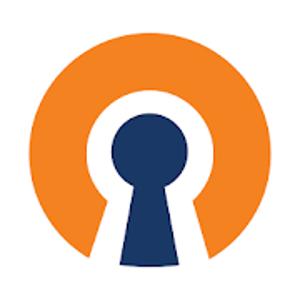 icon OpenVPN