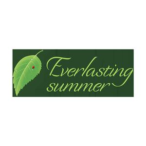 Иконка Бесконечное лето (Everlasting Summer) для Андроид