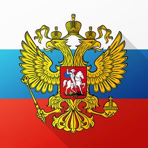 Иконка Скачать игур Симулятор России на Android